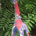 Girafes à adopter!